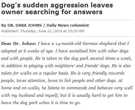 Dogs-Sudden-Aggresion