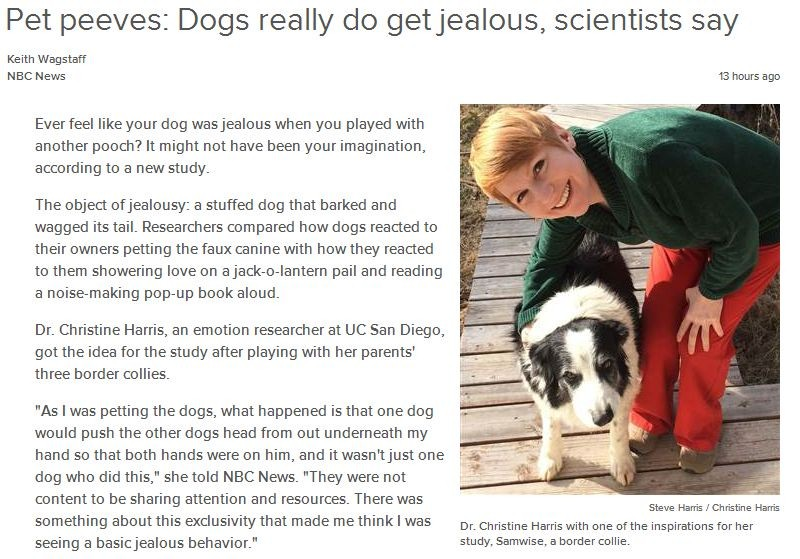 dogs-really-do-get-jealous